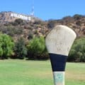 Group logo of Play Hurling Los Angeles