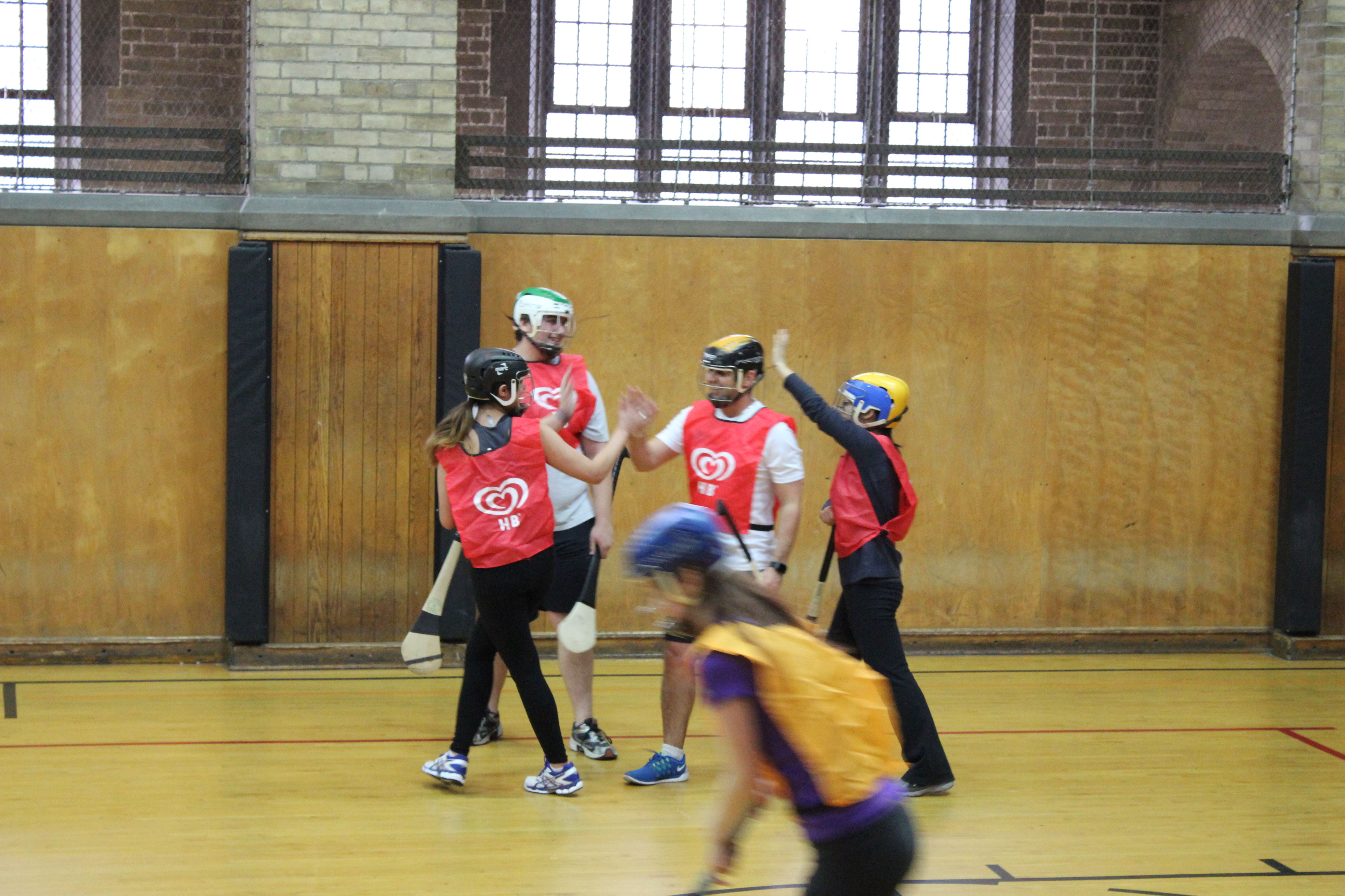 UofT Hurling Lessons match